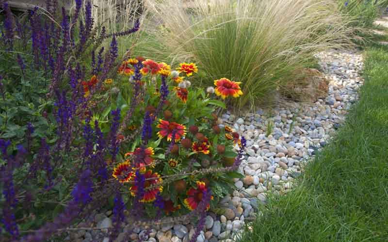 návrhy zahrad ceník
